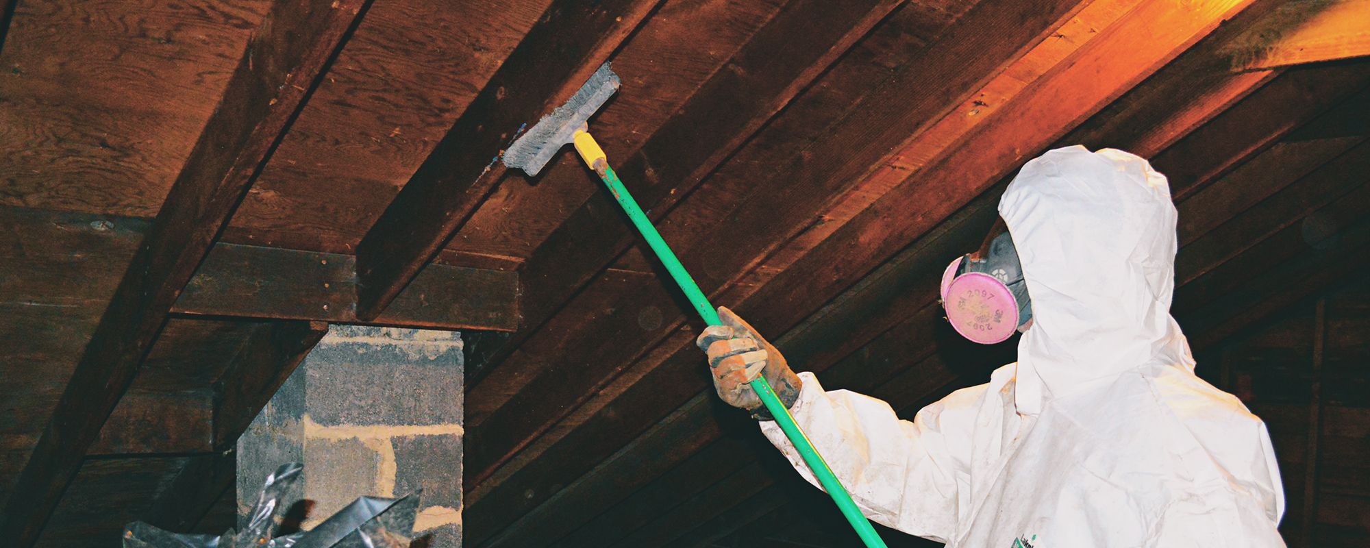 Crawl Space Mold Removal Near Me